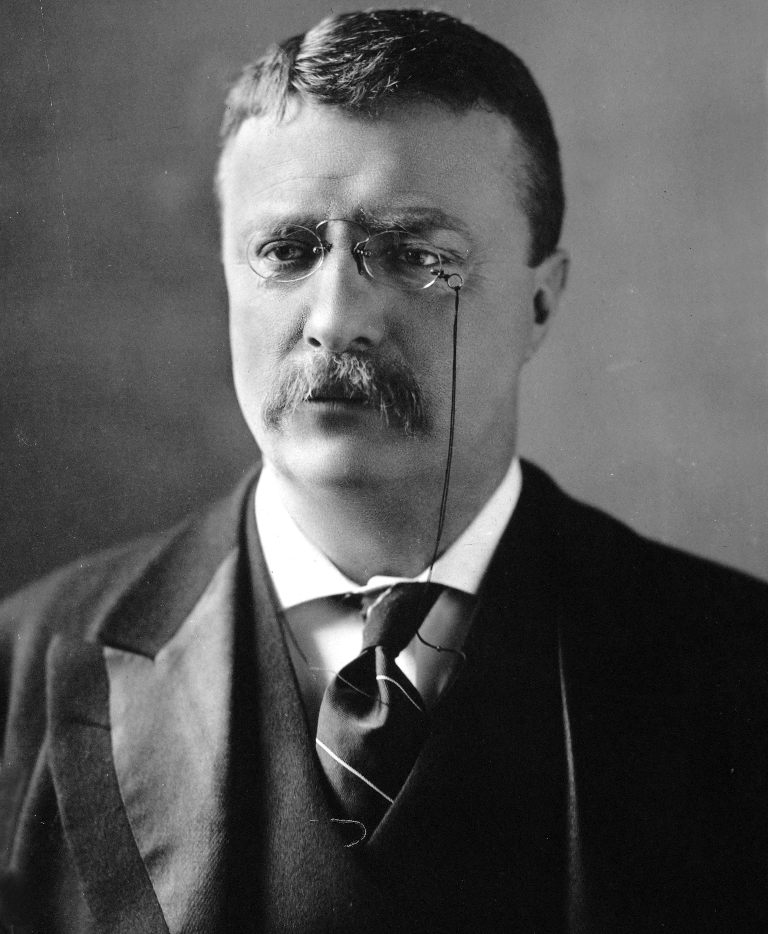 Theodore_Roosevelt_circa_1902