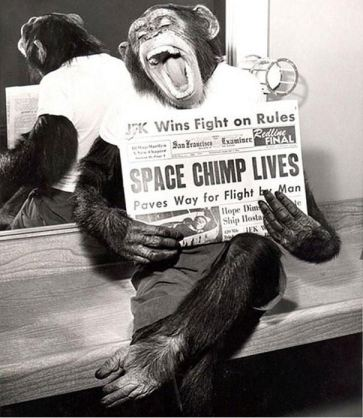 space chimp 1961