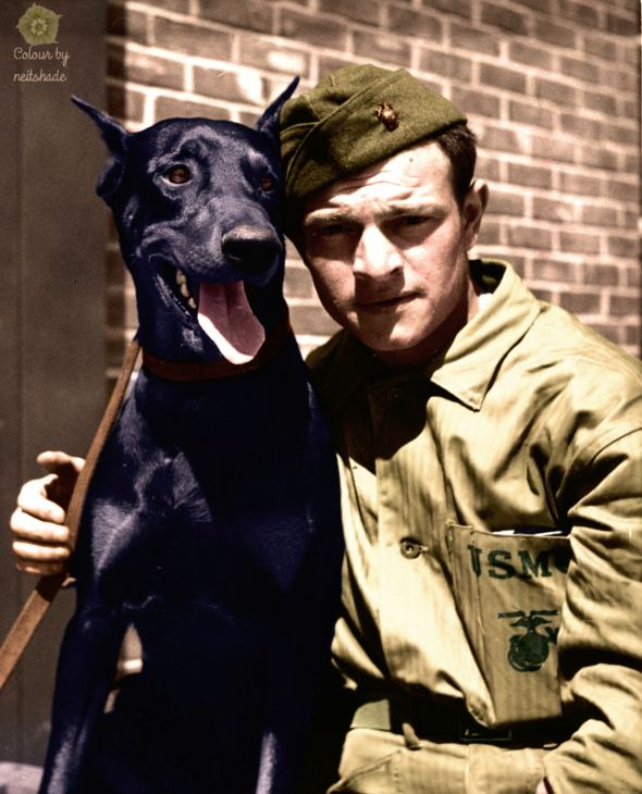 Private-Alexander-Boccardo-and-Doberman-ca.-1943